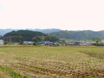 中村8・飛鳥路.jpg